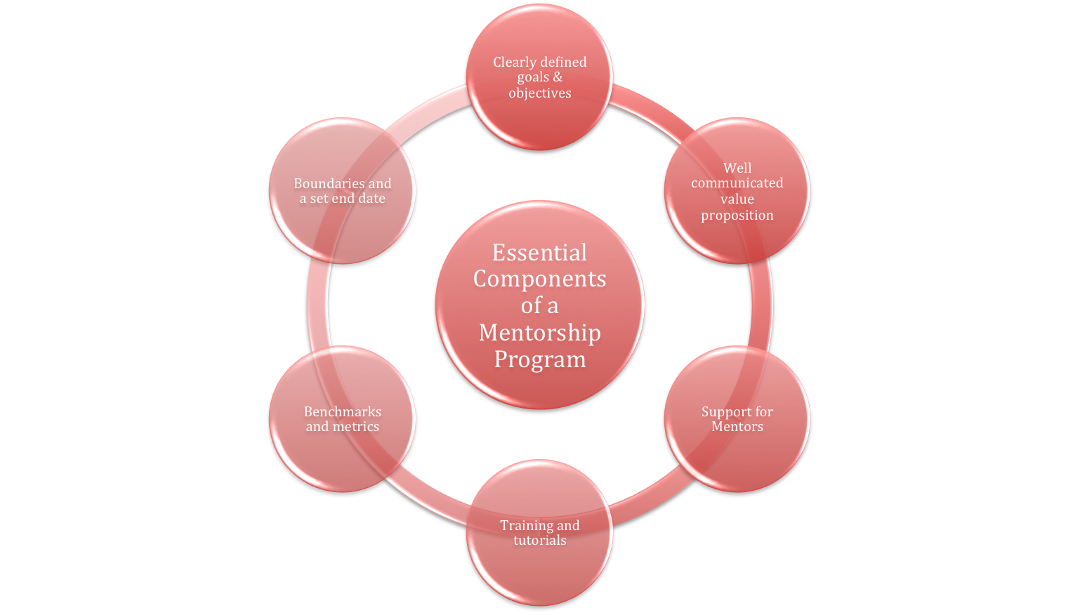 Essential Components of a Mentorship Program